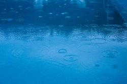 تحلیلی بر رفتارشناسی و شرایط بارندگی طی دوره آماری در استان بوشهر